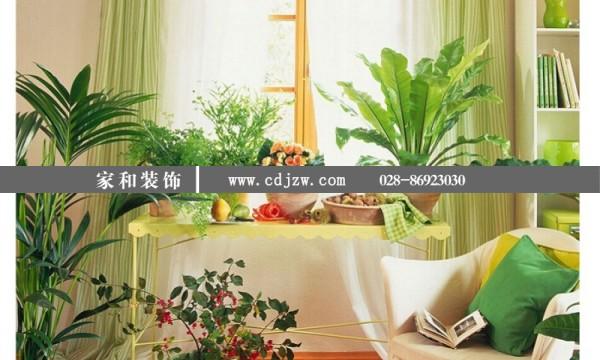 风水学上对室内绿植摆放有很好的建议吗?
