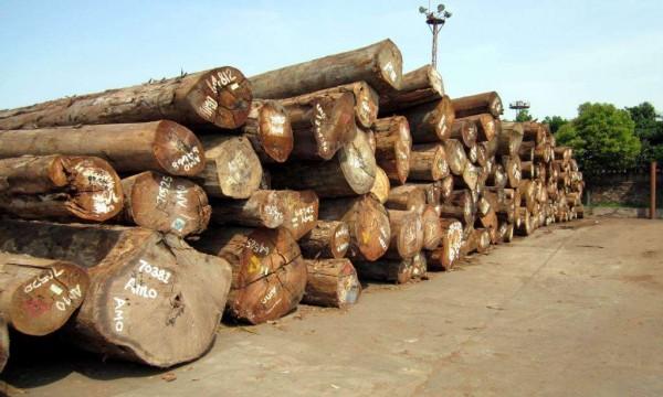 成都旧房改造教大家学习如何识别高棉花梨木实木家具有门道别上当了哟!