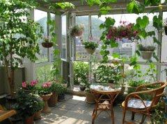 如何把阳台打造成花园?阳台花园的设计要点